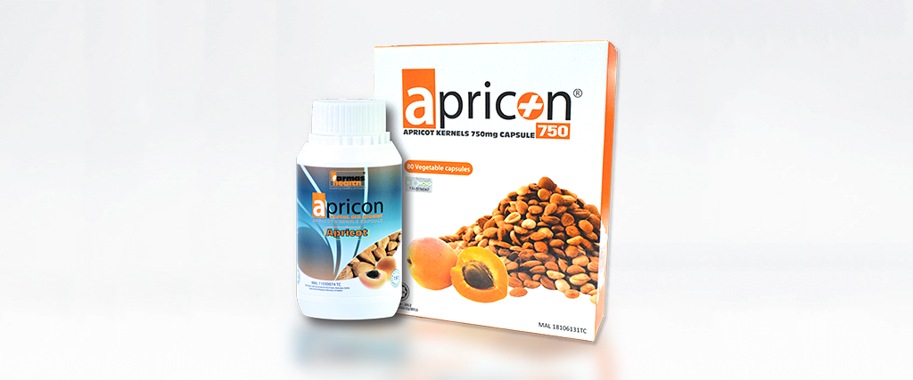 APRICON 750 WEBSITE 3