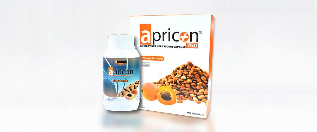 APRICON 750 WEBSITE 3